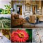 Villa-mangiacane-Best-wedding-location-in-tuscany