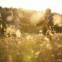 elopement_photographer_in_Siena_60