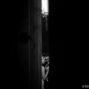 elopement_photographer_in_Siena_75