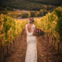Quinta de Sant´Ana Weddings Portugal Vines